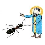 داستان کوتاه حضرت سلیمان(ع) و مورچه